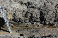 Mielec prace archeologiczne