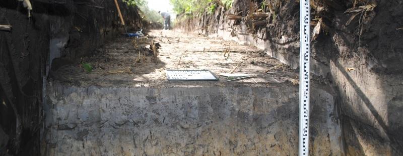 Badania archeologiczne w Sierakoścach