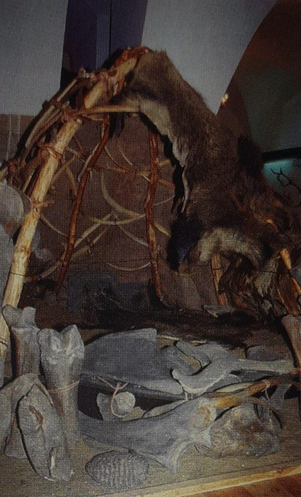 Rekonstrukcja obiektu mieszkalnego z kości mamutów
